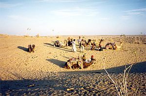 Désert-du-Thar - Water Scarcity in the making